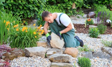 The Importance of Hardscaping Backyards