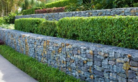 Landscaping With Levels
